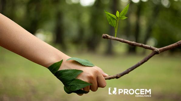 5 Acciones Para Cuidar El Medio Ambiente Desde Tu Lugar De